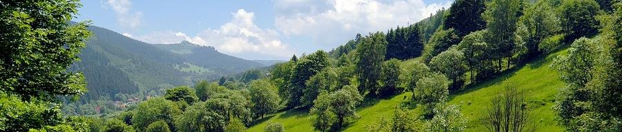Landschaft in der Ferienregion Haseltal