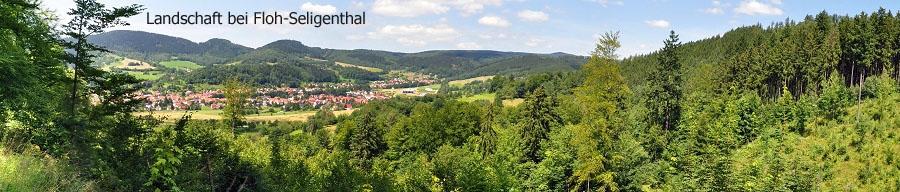Landschaft bei Floh-Seligenthal
