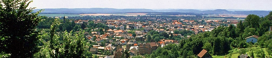 Blick auf den Ort Sonneberg